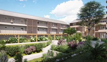Tampon programme immobilier rénové « Les Senioriales de Le Tampon » en loi pinel
