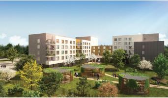 Amiens programme immobilier neuve « Vitam'In »  (2)