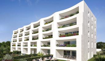 Marseille programme immobilier neuf « Cristo