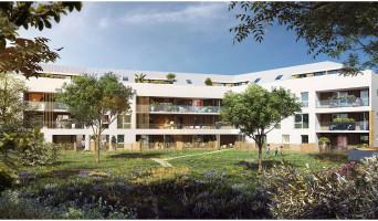 Mont-Saint-Aignan programme immobilier neuve « Central Park » en Loi Pinel  (2)