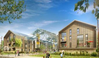 Ris-Orangis programme immobilier neuve « Les Docks Apollonia »