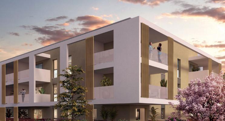 Perpignan programme immobilier neuf « Domaine du Sud » en Loi Pinel